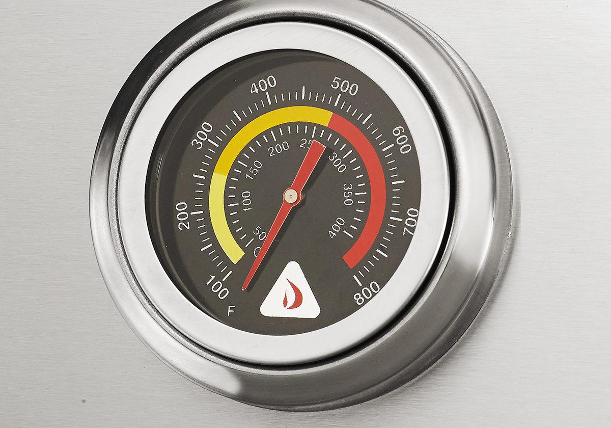 Img4-TemperatureGauge